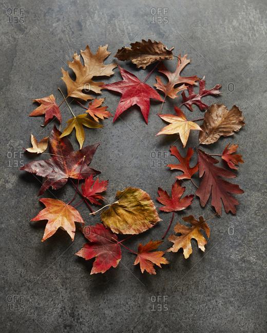 Wreath of fall leaves