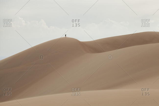 Lone hiker looks out from summit of sand dune