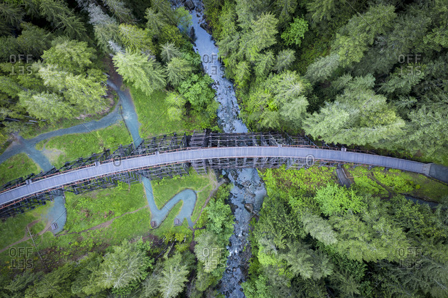 Kinsol trestle in the middle of the forest, Vancouver island, Canada