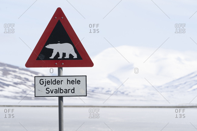 Norwegian road sign with polar bear
