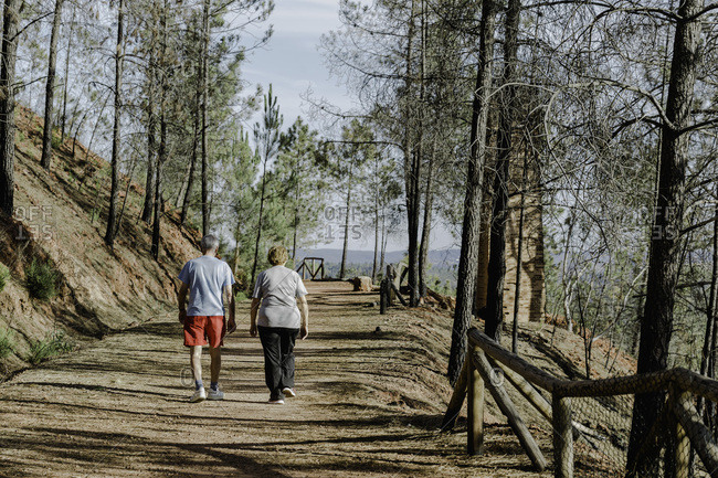 Rear view of senior couple walking down in park