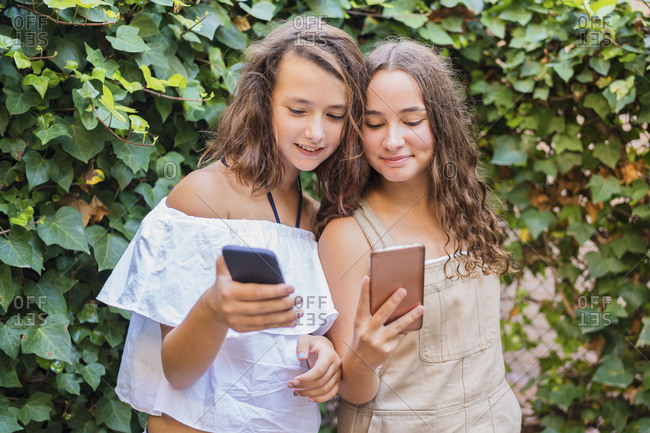 Young girls using smartphone on ivy background