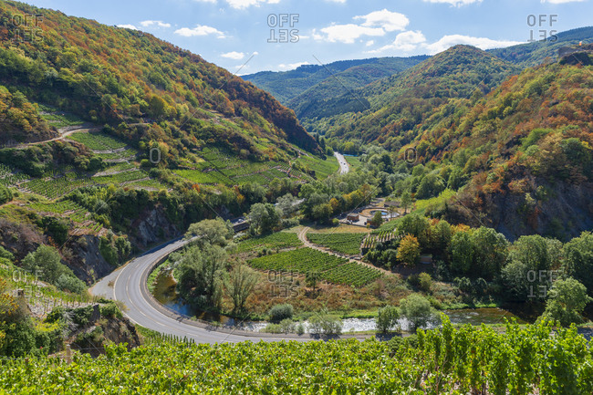 Germany- Rhineland-Palatinate- Mayschoss- Ahr Valley- country road- Ahr river