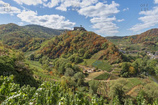 Germany- Rhineland-Palatinate- Ahr Valley- Mayschoss- Saffenburg