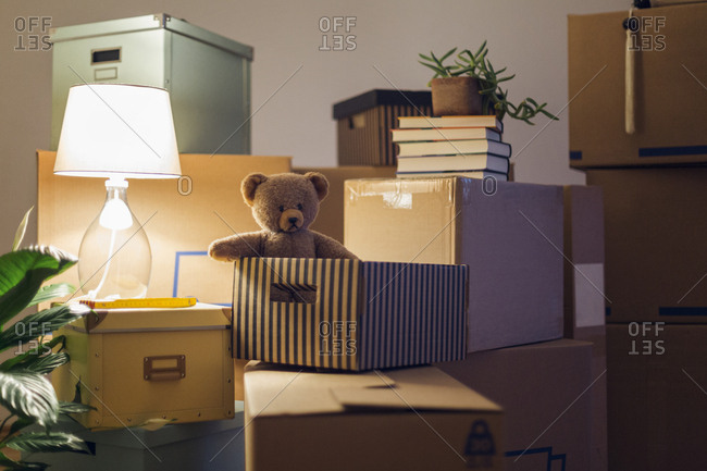 Teddy bear inside cardboard box in an empty room in a new home