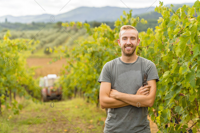 Portrait of confident young man in vineyard