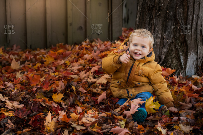 Baby boy wearing yellow coat sitting in a pile of leaves