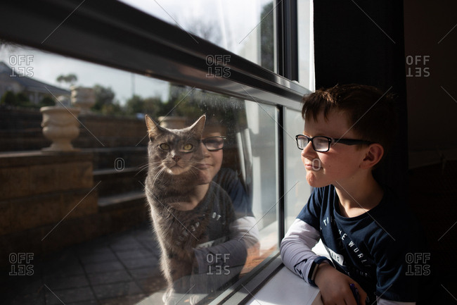 Little boy with glasses looking out window at cat
