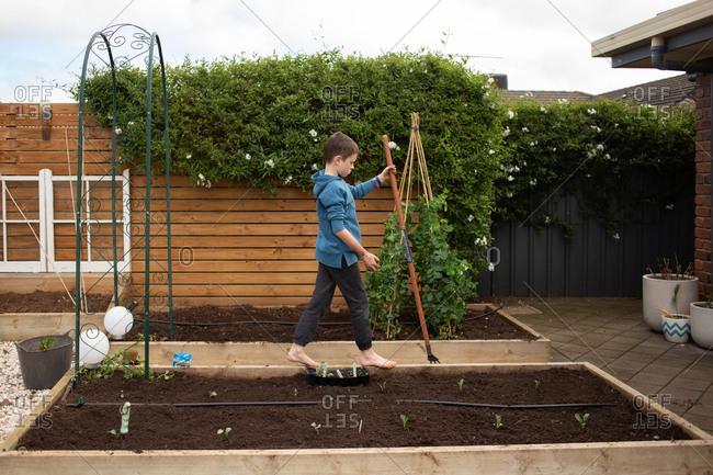 Boy walking on edge of raised garden