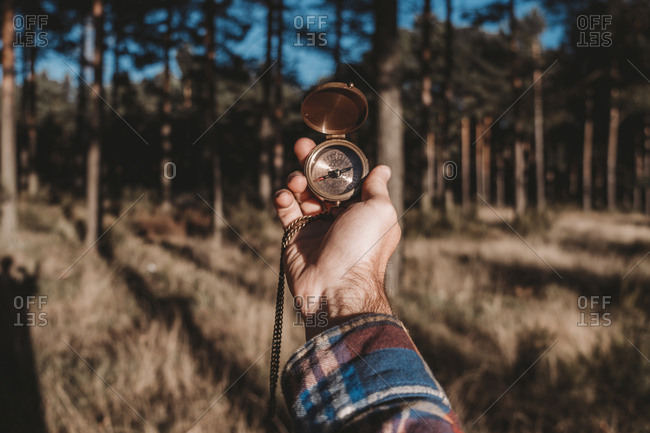 Crop man in plaid shirt holding modern compass while standing in chilly evergreen woods