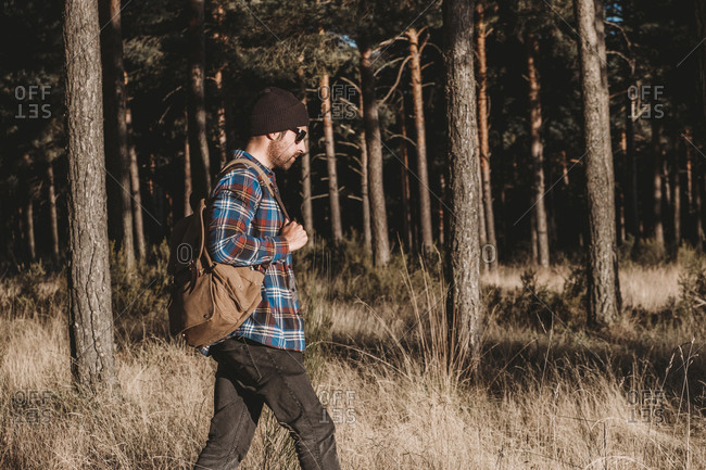 Side view man in hat with backpack walking along evergreen trees on sunny day