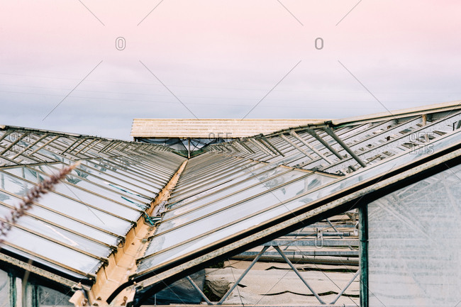 Glass greenhouse roofs in overcast weather