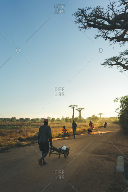 Madagascar - JULY 6, 2019: People in colorful casual clothes with carts walking along dusty road by distant tropical forest