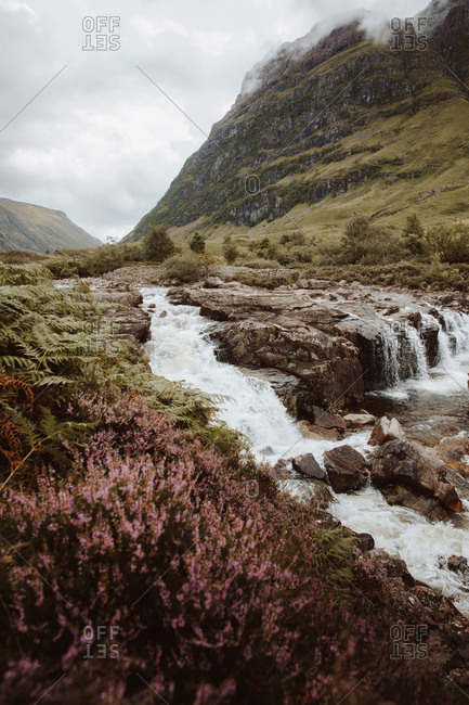 Picturesque view of bubbling water with rocks and ferns in mountain valley of Glencoe on summertime