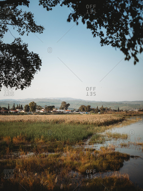 Grassy coast of calm pond located near small village in cloudless evening in countryside
