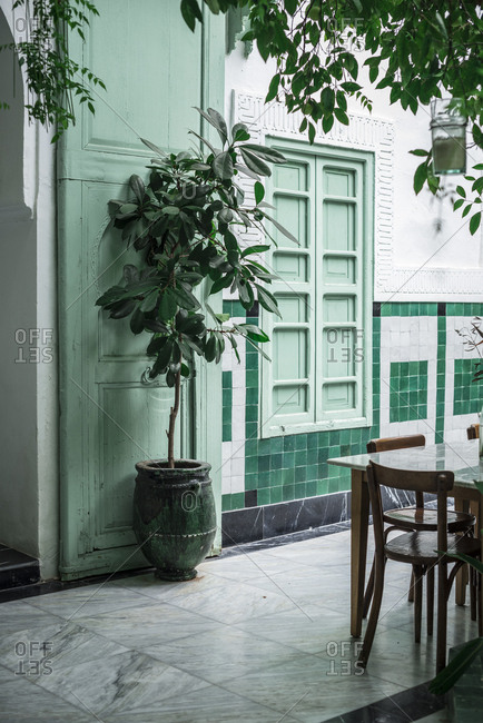 Potted tree and table with chairs located outside traditional Arabic building with green walls on street of Marrakesh, Morocco