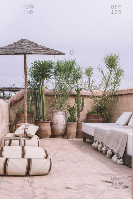 Pots with tropical plants and comfortable couch located on terrace against overcast sky in Marrakesh, Morocco