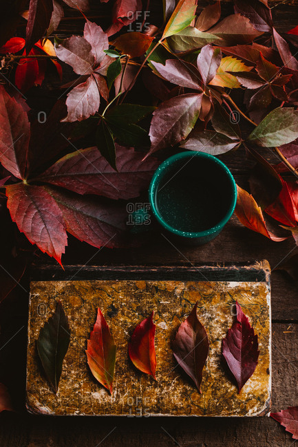 From above aged vintage book with bright red orange yellow autumn leaves and green cup with drink on wooden table