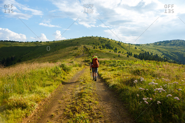 traveler with red backpack walking on carpathian mountain meadows