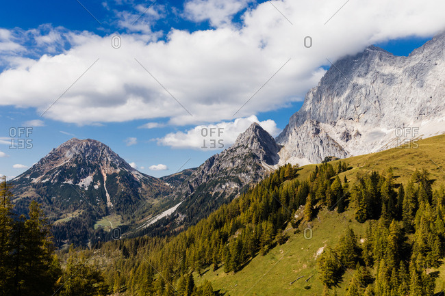 the peaks of the alpine mountains rise above the green forest
