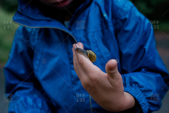 young boy standing in the rain holding a snail in his hand