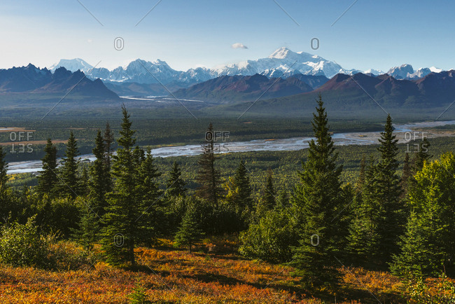 Denali and the Alaska Range as seen from the Curry Ridge Trial in fall