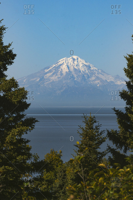 Mt Redoubt volcano framed between spruce outside of Homer, Alaska