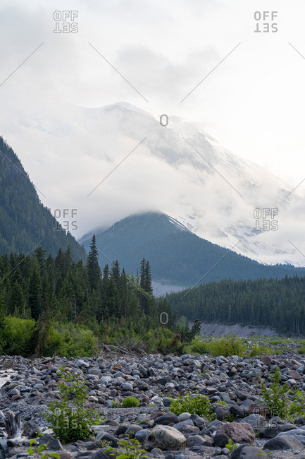 Rocky river bed leading to Mt Rainier National Park