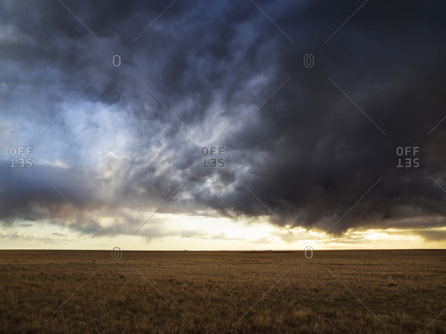 A summer storm over a prairie field.