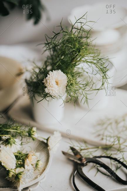 White freshly cut flowers in vase