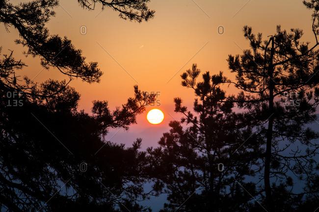 Sun setting over treetops in Borjomi-Kharagauli National Park, Lesser Caucasus, Georgia