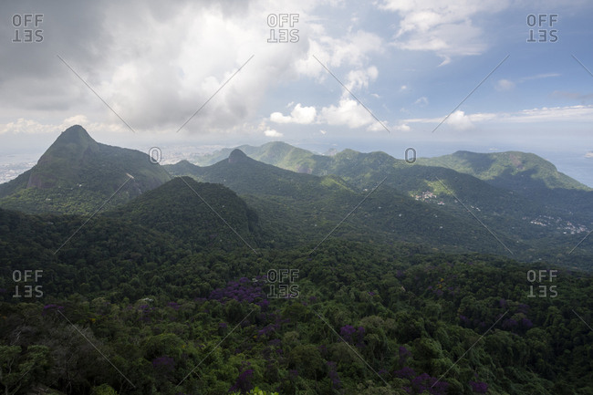 Beautiful green rainforest landscape and mountains, Tijuca Forest