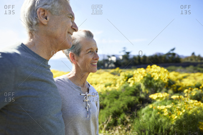 Smiling senior couple looking away while standing against sky during sunny day