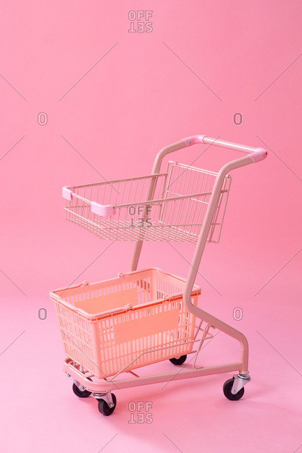The shopping cart