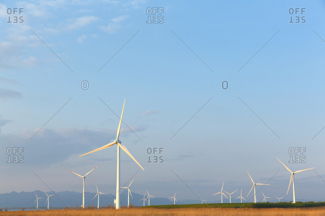 Wind power from the Offset Collection