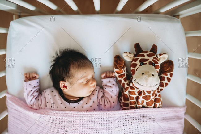 Newborn baby girl sleeping in crib with a plush giraffe