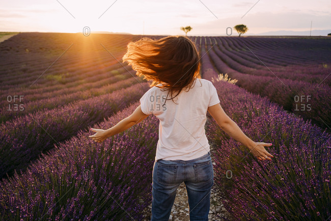 France- Valensole- back view of woman standing in front of lavender field at sunset