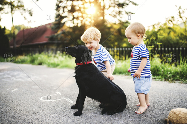 Toddler and his little sister playing with dog outdoors