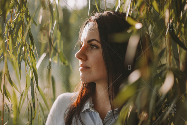 Close-up of thoughtful woman looking away while standing by weeping willow in park