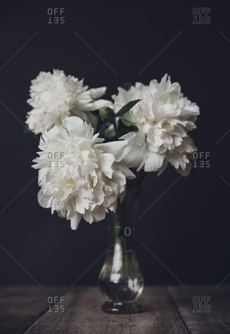 Close-up of white flowers in vase on wooden table against black background