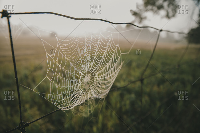 Close-up of spider web hanging on metal against landscape