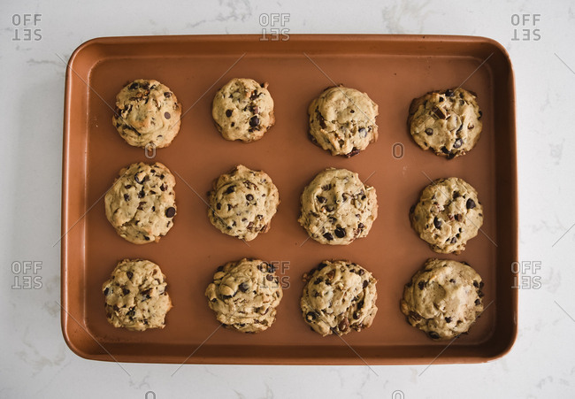 Sheet pan of freshly baked chocolate chip cookies shot from above