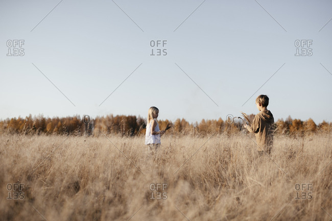 Siblings collecting grasses on autumnal meadow