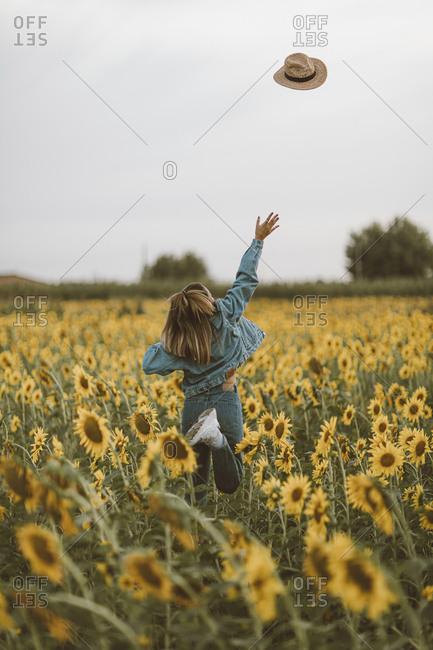 Rear View of young woman with blue denim jacket throwing a hat in a field of sunflowers