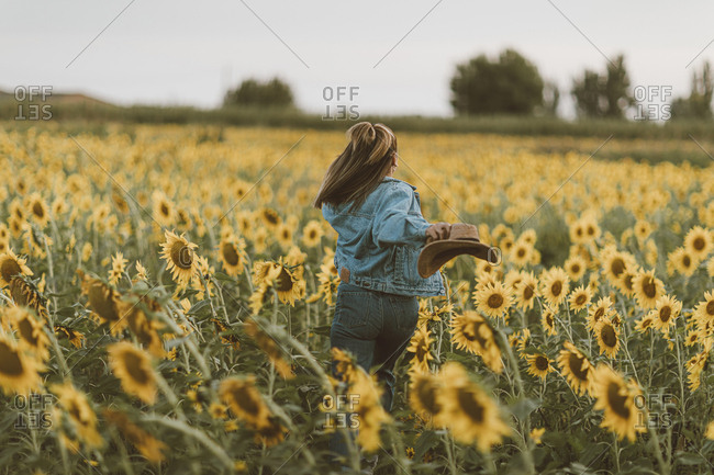 Young woman with blue denim jacket and hat running in a field of sunflowers