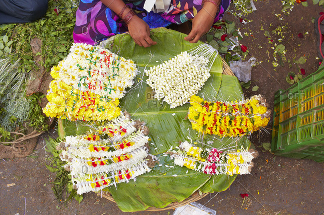 Overhead view of a woman stringing floral garland, Mumbai, India
