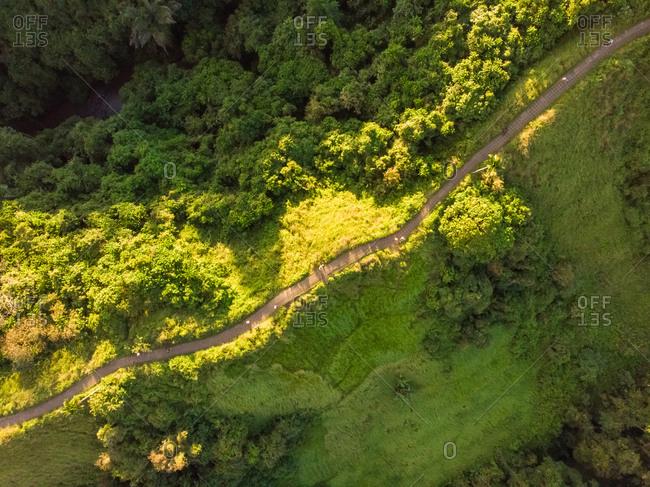 Aerial view of campuhan ridge walk at sunset near Ubud, Indonesia.