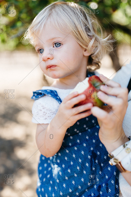 Little girl with blonde hair and blue eyes eating an apple