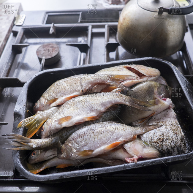 High angle view of fishes in tray on stove