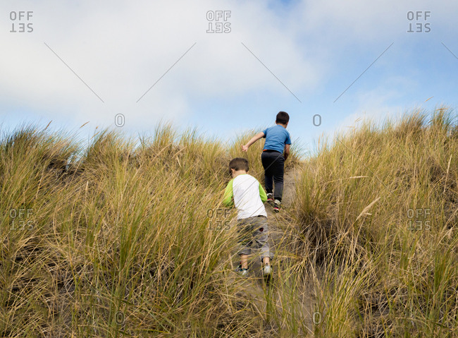Rear view of siblings walking on trail amidst grass against sky